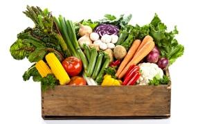 Vegetables-Basket-012