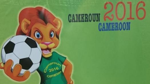 cameroon-2016