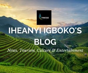 IHEANYI IGBOKO'S BLOG.jpg
